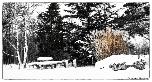 patio and grass Dec 16 2017 b&w name