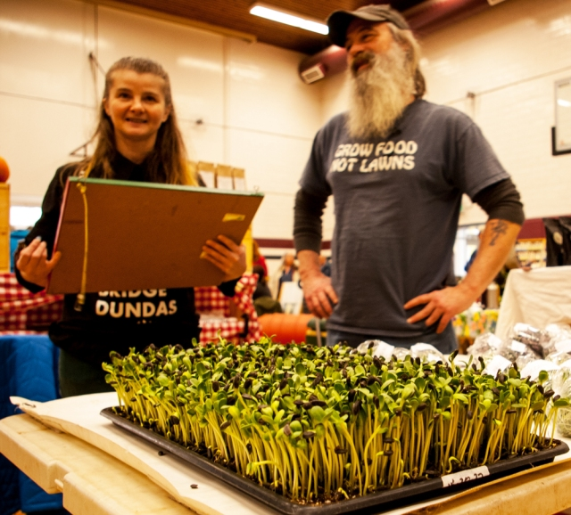 Green Wheel Farm with sunfloweer sprouts at Pictin Seedy Saturday