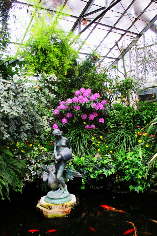Rhodo and Koi Pond at Allan Gardens