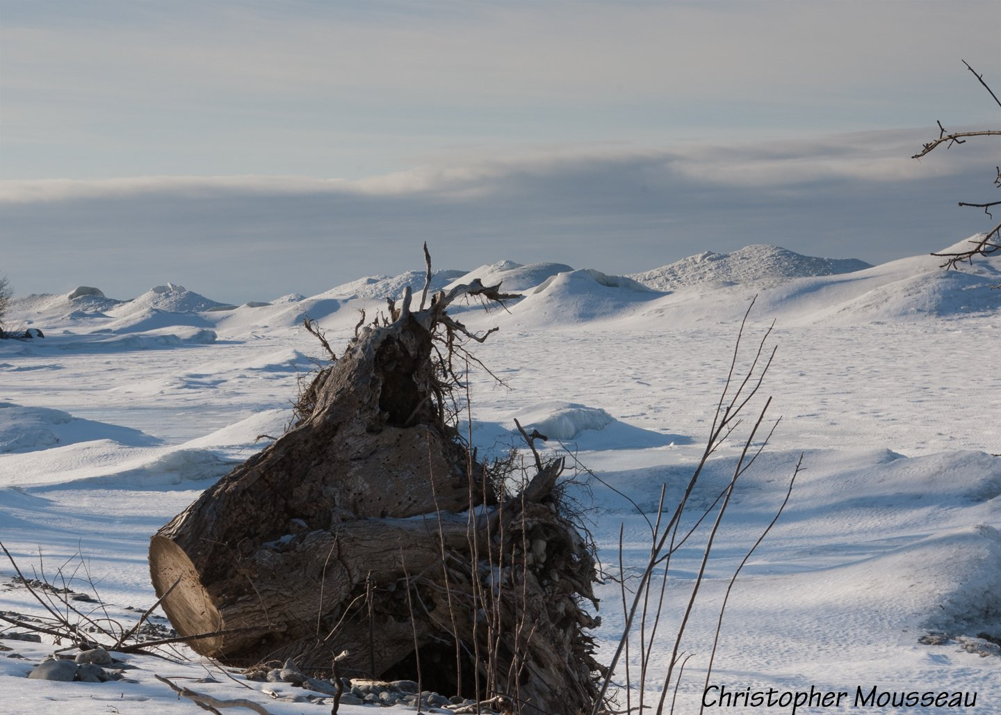Tree stum laying on ice and snow covered beach; pig piles of ice blown to shore in background.