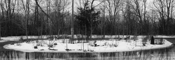 Snow covered Island garden bed March 15, 2019.  Snow in the yard melting, flooding the front part of the driveway so that the Island garden bed really looks like , and really is, a bit of an island.  Overcast, mid afternoon, black and white.