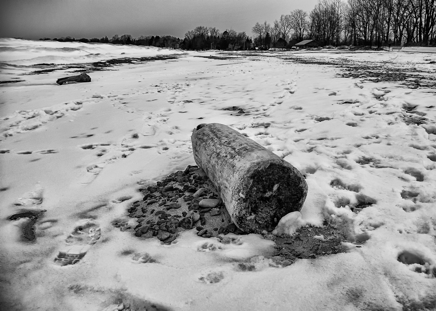 Wellington Beach in winter - covered by snow, ice mounds on the left, a forlorn looking log in the front.