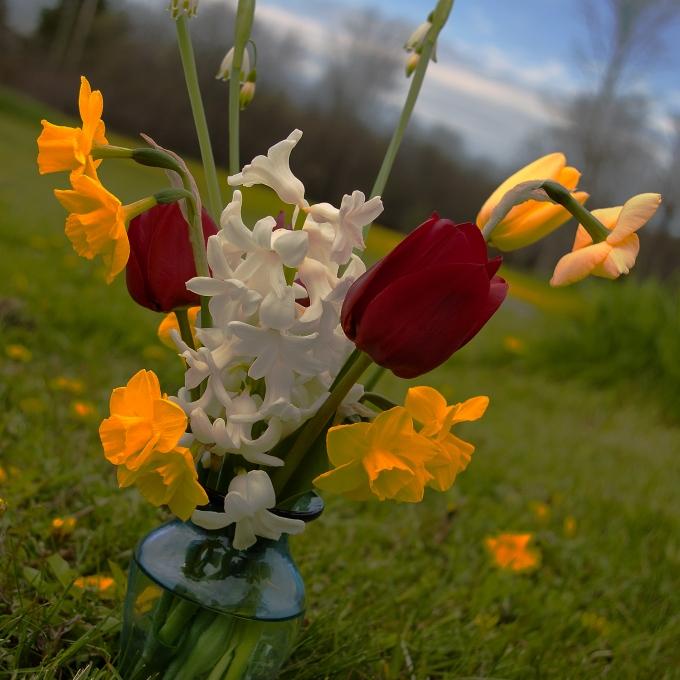 A vase of fresh cut spring flowers.