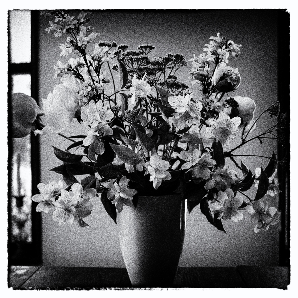 Same vase of flowers, but in black and white